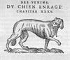 В Горийском уезде умер от собачьего бешенства некто князь Мачабели