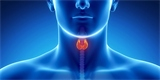 Научно-практическая конференция «Актуальные вопросы оториноларингологии и аллергологии»