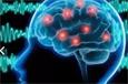 Электроэнцефалография при расстройствах пищевого поведения