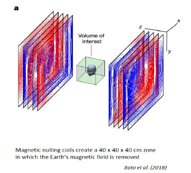 Мобильная магнитоэнцефалография: новые технологии нейронаук [1]
