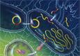 А всё-таки микроорганизмы влияют на геном человека!