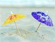 Названа новая опасность пляжного отдыха: бактерии Vibrio vulnificus