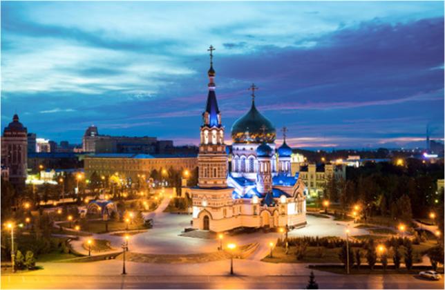 25 Региональная Образовательная Школа Ассоциации Травматологов-Ортопедов России