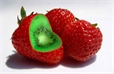 Ярые противники ГМО оказались самоуверенными невеждами