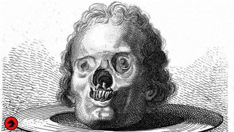 Поэма о сифилисе. История первого в мире инфекциониста