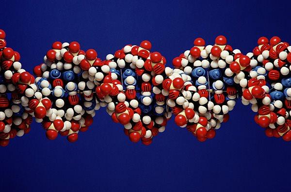"""""""Мы ошиблись"""". Канадские ученые бьют тревогу по поводу мРНК-вакцин от коронавируса"""