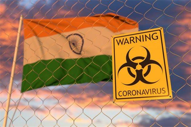 Доля индийского варианта коронавируса в России достигла 63%