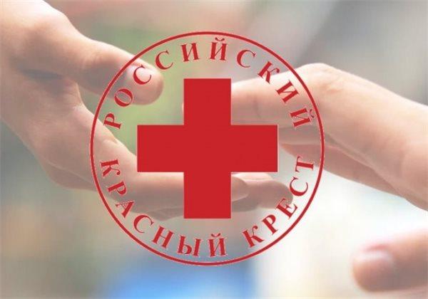 Красный Крест: дело о покушении на мошенничество возбудили против бывшей главы организации