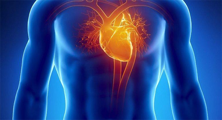 Визуализирующие технологии в кардиологии и сердечно-сосудистой хирургии