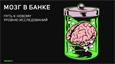 Мозг в банке