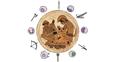 Ревматоидный артрит: изменить состав суставов